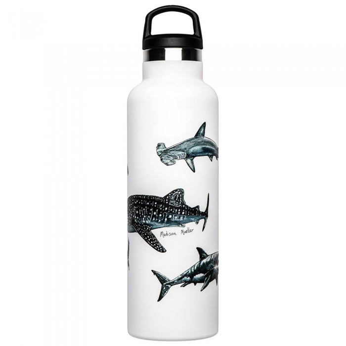 [해외]FISH TANK Shark Poster 600ml 6137542840 Shark Poster