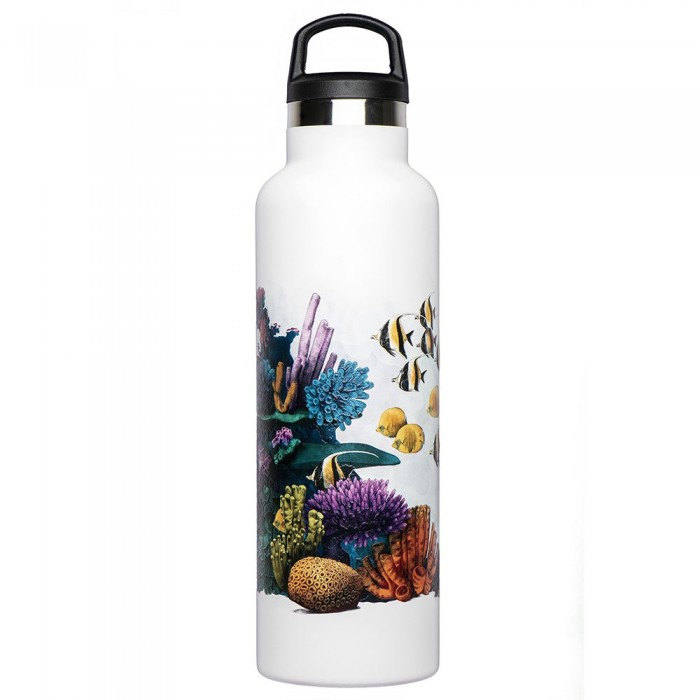 [해외]FISH TANK Corals 600ml 6137542842 Corals