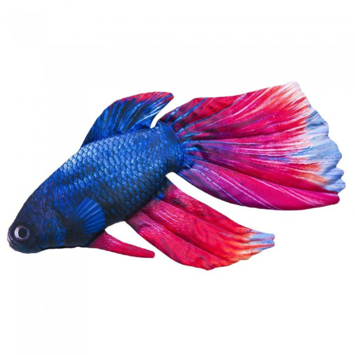 [해외]GABY 더 Siamese Fighting Fish Blue / Pink
