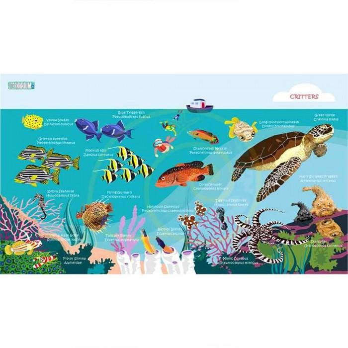 [해외]OCEANARIUM Turtle L 10137681029 Blue / Multicolor