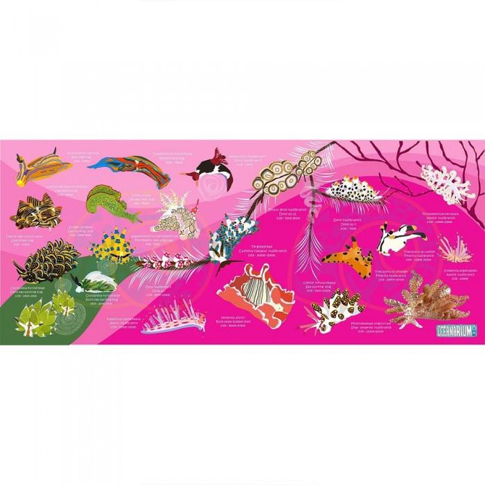 [해외]OCEANARIUM Nudibranch M 10137681030 Pink / Multicolor