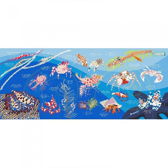 [해외]OCEANARIUM Crustaceans M 10137681032 Blue / Multicolor