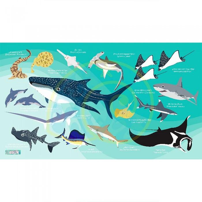 [해외]OCEANARIUM Sharks & Rays L 10137681034 Light Blue / Multicolor