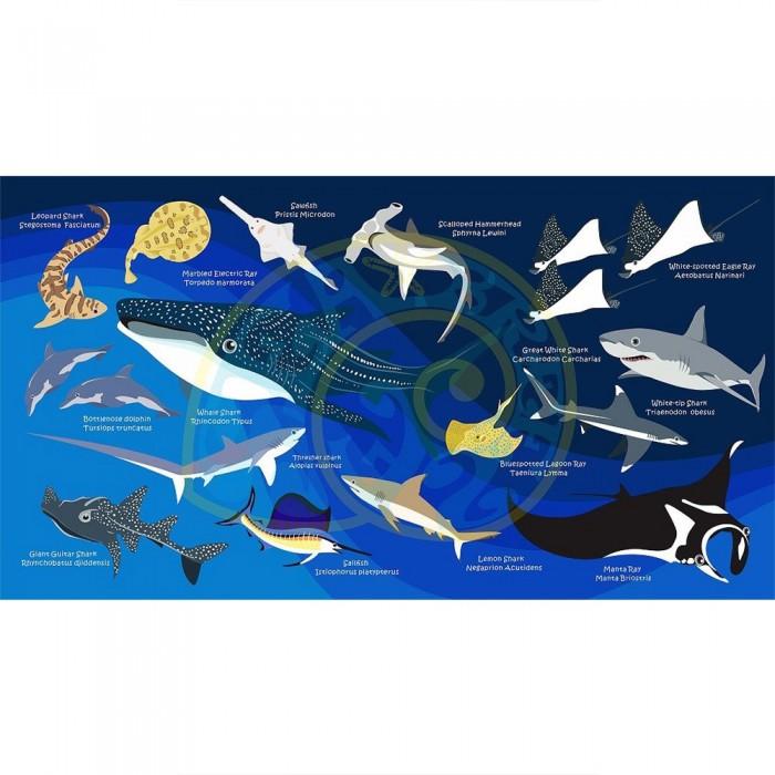 [해외]OCEANARIUM Sharks & Rays Large 10137681026 Dark Blue / Multicolor