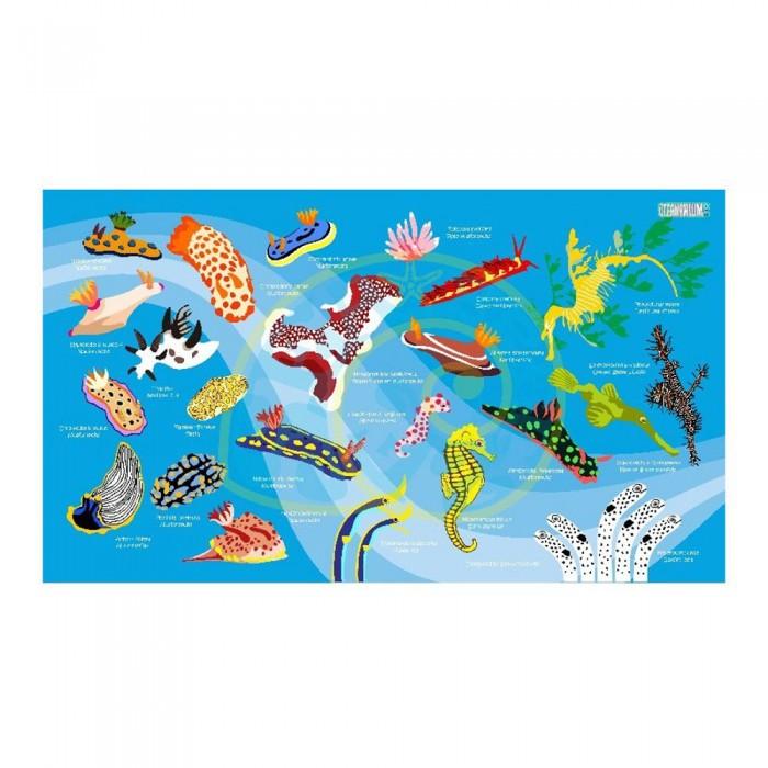[해외]OCEANARIUM Nudibranch M 10137681039 Light Blue / Multicolor