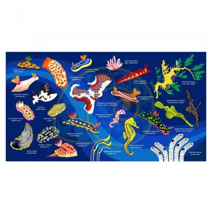[해외]OCEANARIUM Nudibranch L 10137890115 Dark Blue