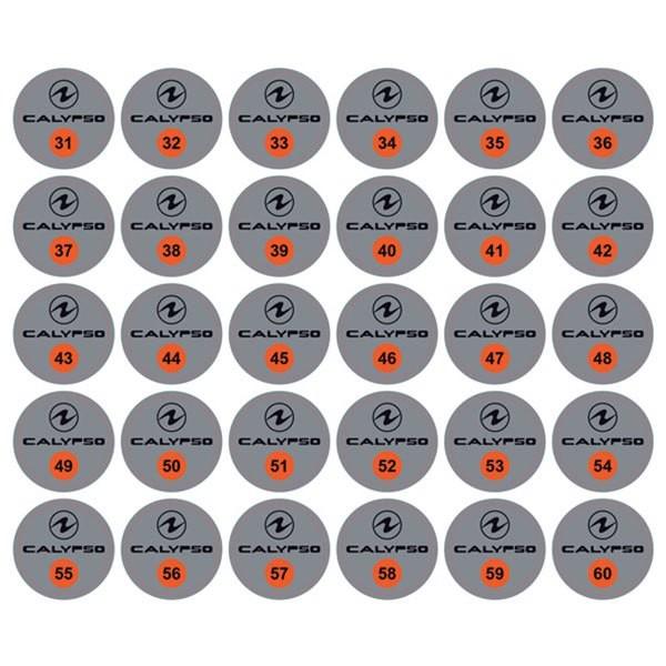 [해외]아쿠아렁 Calypso 31-60 Numbers Stickers 30 Units 10137691384 Grey